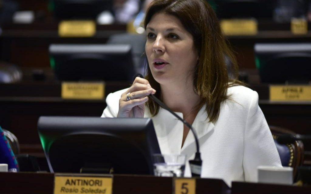 Diputada de la oposición cruzó a la provincia de Buenos Aires por la demora en la ley de generación distribuida