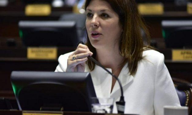 """Rosío Antinori: """"La Legislatura como el gobierno de Kicillof no ven a las renovables como una política de Estado"""""""