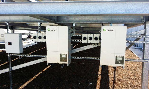 Growatt apunta al mercado argentino: el objetivo en 2019 es cubrir 100 MW con sus inversores solares