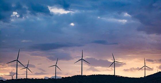 Schneider Electric se alía con Acciona en el mercado de compraventa de electricidad renovable