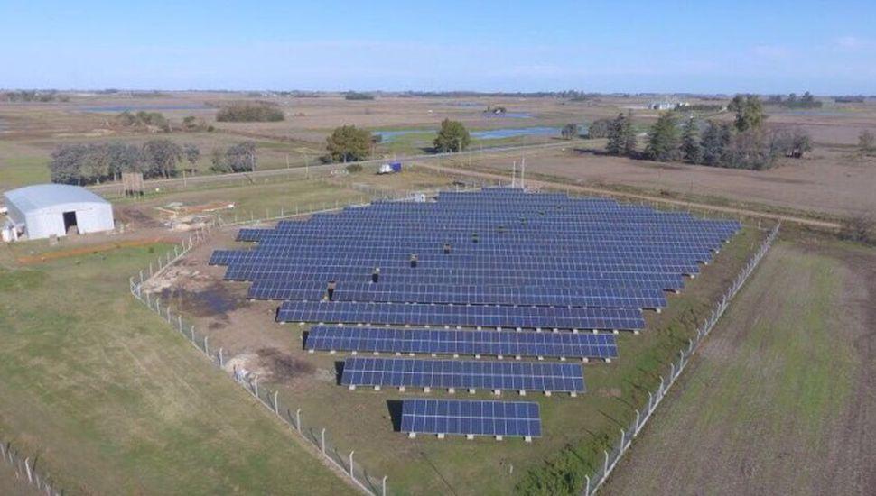 Licitación del Proinged: empresa local anticipa que participará sobre el desarrollo de 14 parques solares