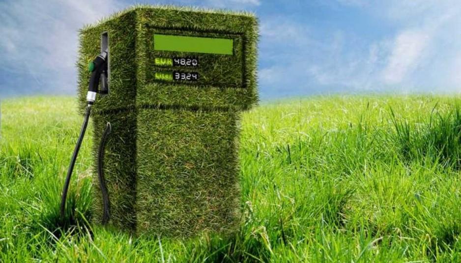 Biodiesel: Por qué la actividad debe seguir siendo regulada y cómo impacta su uso en el valor del gasoil en surtidor