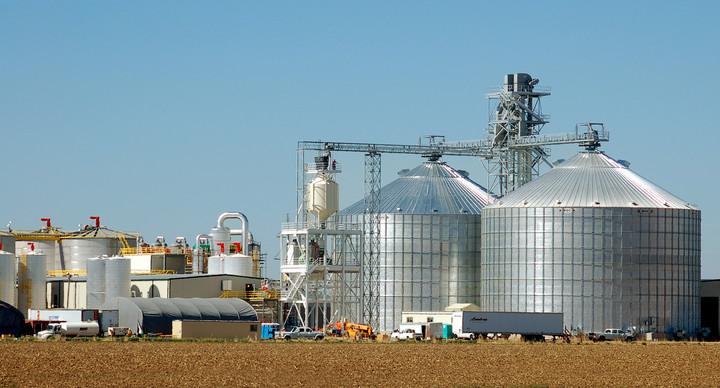 Nuevos descubrimientos sobre el maíz pueden optimizar la producción de etanol