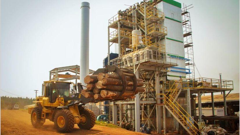 Entidad financiera abocada exclusivamente a las bioenergías ya estructuró dos proyectos de la Ronda 2