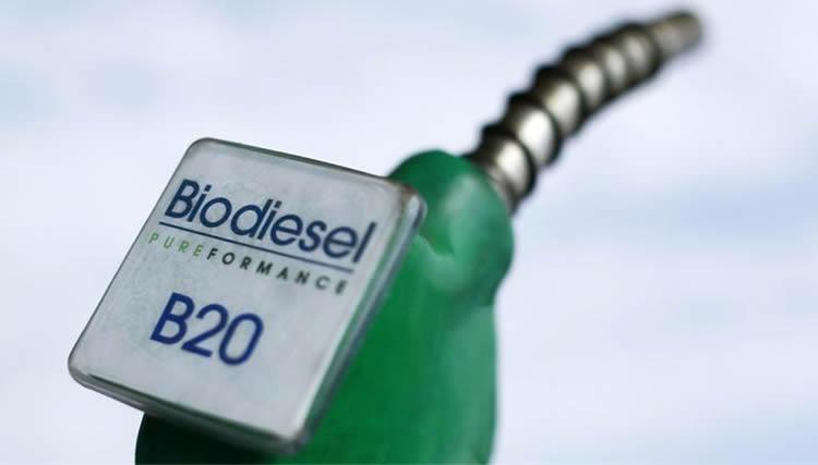 Legisladores reclaman incrementar el corte de Biocombustibles en el gasoil