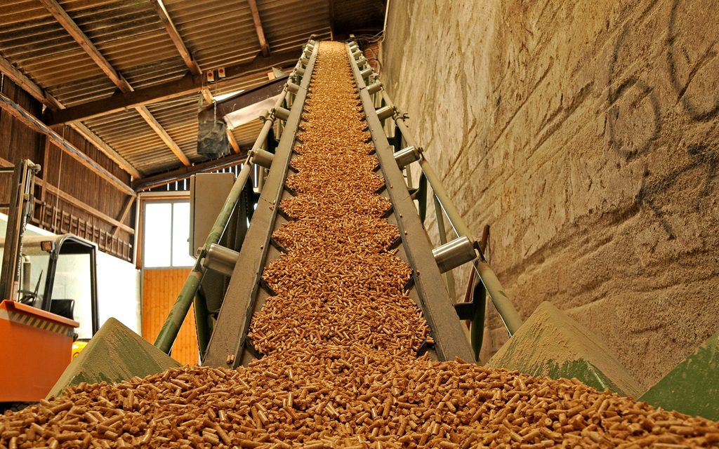 Radiografía del mercado de la biomasa: los emprendimientos que deberán funcionar este año, los que ya lo hicieron y los que fueron dados de baja