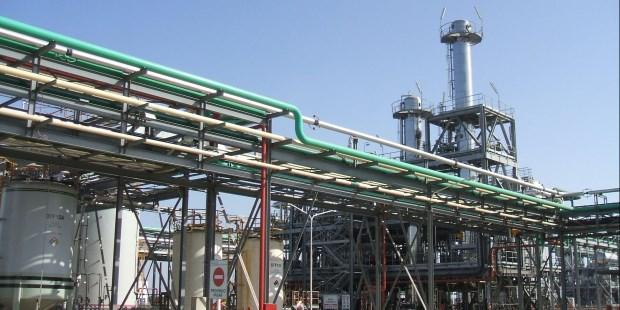 Expectativas: cómo ven empresarios del biodiesel y funcionarios la reapertura del mercado europeo