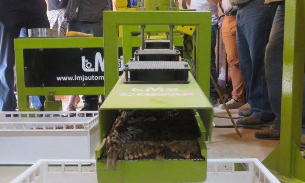 Avances en la producción de biocombustibles sólidos de base forestal en Patagonia