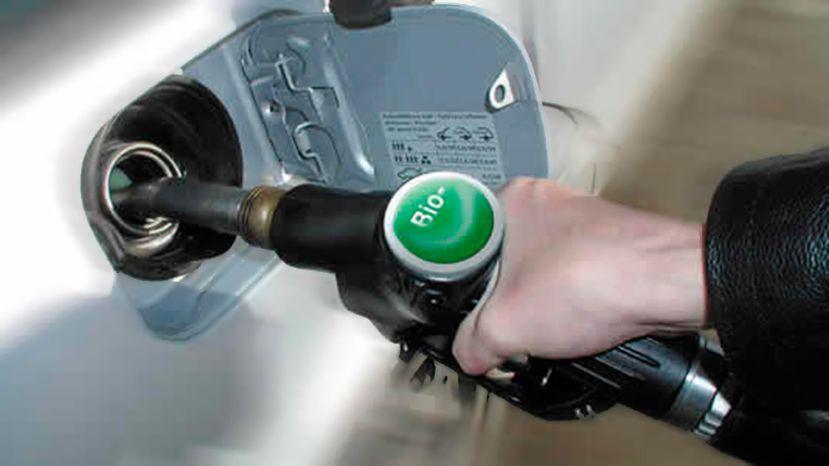 Nuevos valores: el Gobierno aumentó el precio del bioetanol y redujo el valor del biodiesel