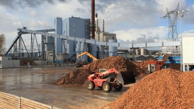 La planta de biomasa de Pergamino, cerca del final de obra