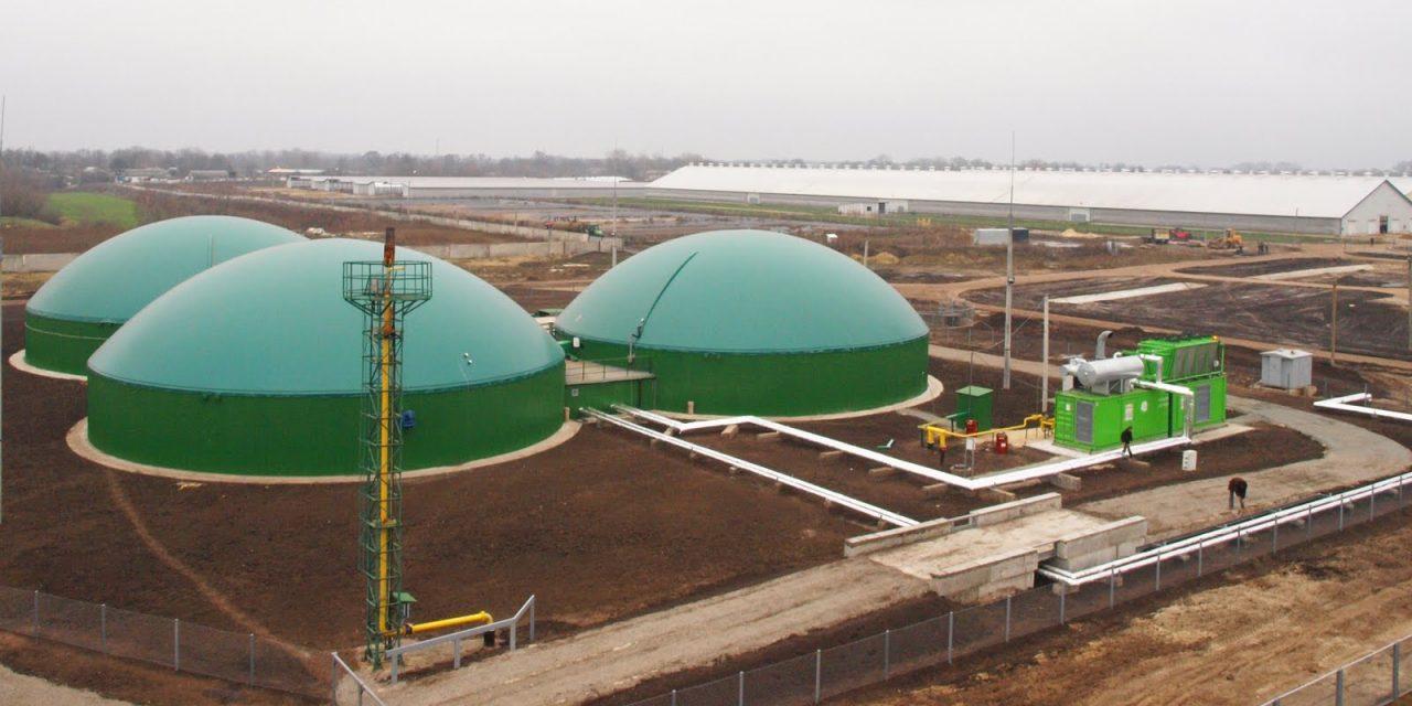 Sector bioenergético conforme con los nuevos cambios en la licitación Ronda 3, aunque considera que la participación de proyectos será baja