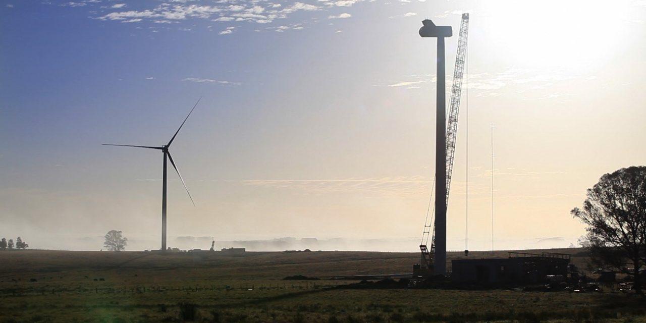 Ventus busca afianzarse en la subasta de renovables «ronda 3» como epecista