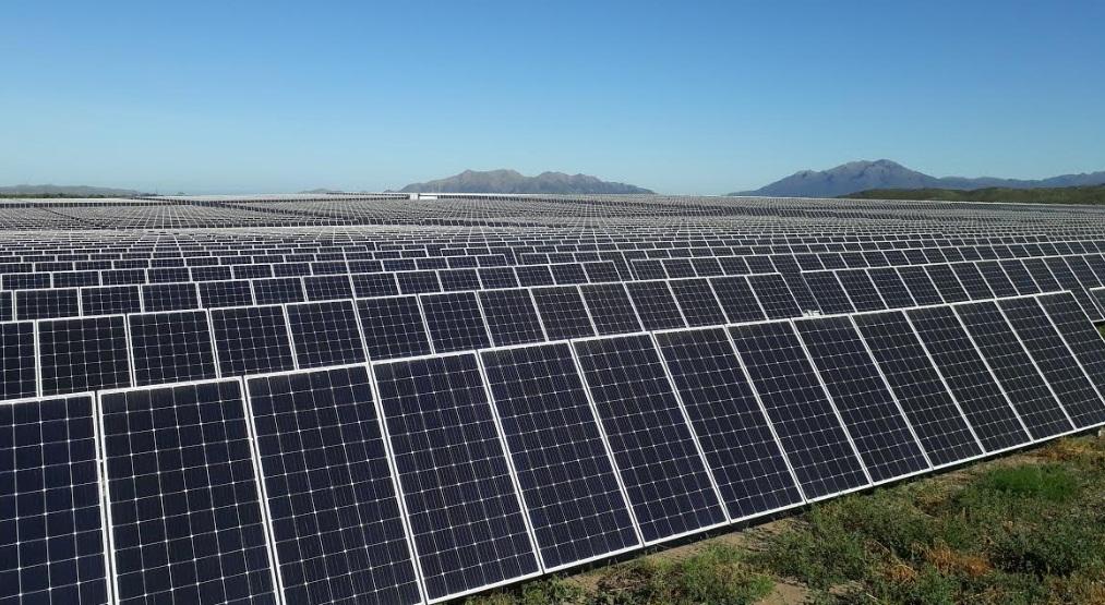 """La foto más contundente: así resultaron las cifras de un lunes """"histórico"""" para las energías renovables en Argentina"""