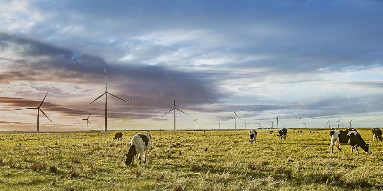 """Acciona, primera en el ranking sobre generación eléctrica más """"verde"""" del mundo"""