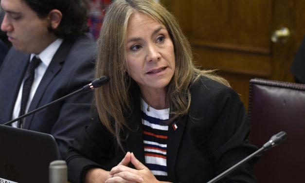 Diputados plantearán hoy a la ministra Jiménez que las eléctricas se hagan cargo de los medidores inteligentes