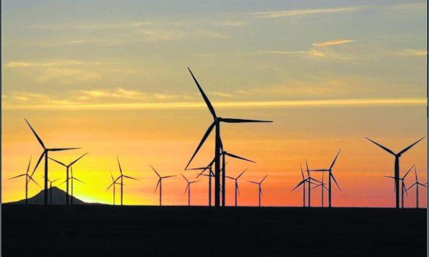Columna de Opinión: Sergio Bergman y la preservación del ambiente como política de Estado
