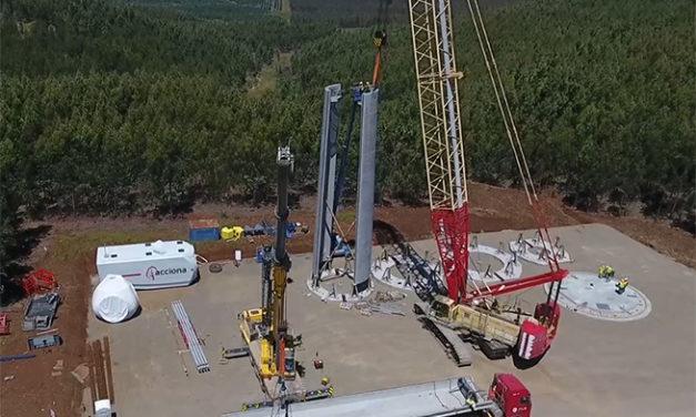 Las empresas y sus siete proyectos, caso por caso: según CNE este año entran en operación 537 MW eólicos en Chile