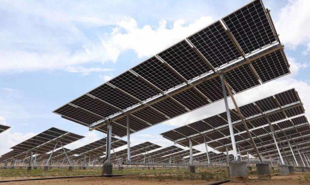 LONGi es clasificado como el fabricante fotovoltaico más estable financieramente por Bloomberg NEF