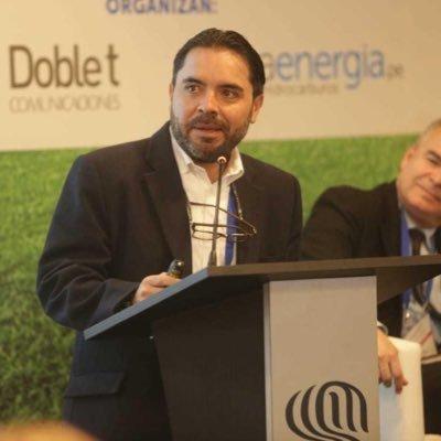Alejandro Lucio analiza los principales desafíos por los que atraviesa la subasta de energías renovables para ser exitosa