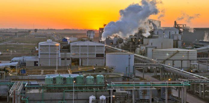 Energías renovables: Vicentín cerró un importante contrato para proveer a sus plantas