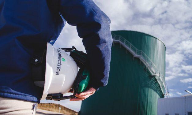 Bioeléctrica escala en el Programa RenovAr: motores en marcha, ampliaciones y nuevos negocios
