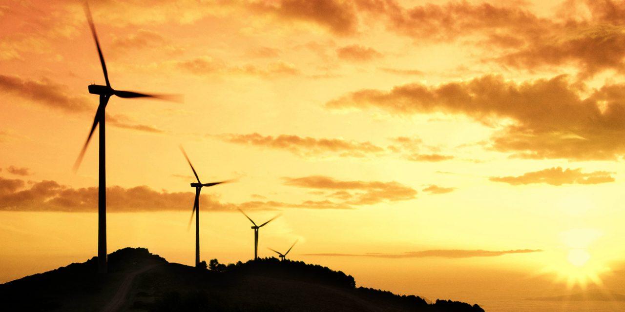 Mercado entre privados: cuáles son los rubros más interesados para firmar contratos de energías renovables en México
