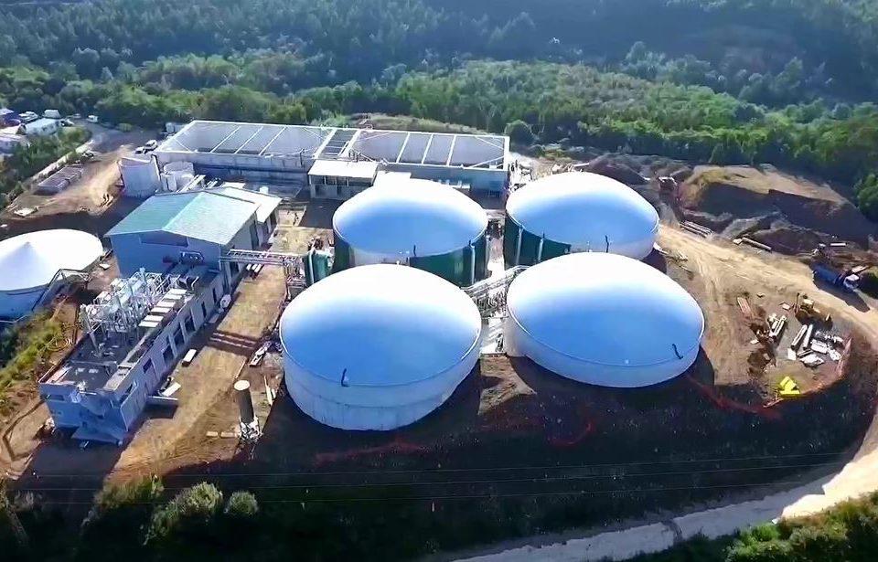 Datos actualizados: existen 17 centrales de bioenergías en funcionamiento en Argentina por más de 140 MW