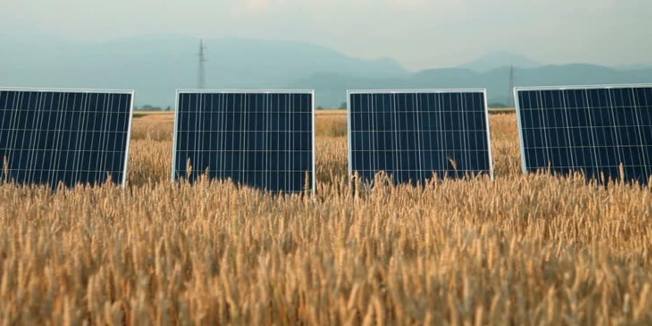 La cervecería Bavaria anuncia nueva subasta en Colombia para cerrar contratos de abastecimiento con generadoras eólicas o solares