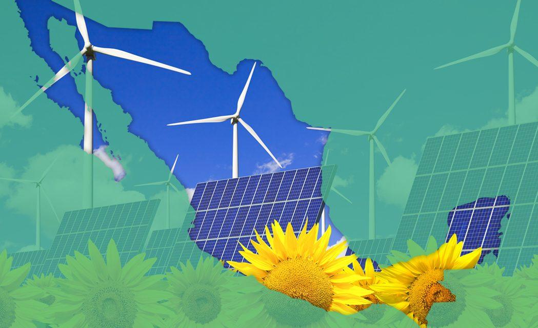 """Angélica Quiñones de ANES: """"queremos ir permeando el aprovechamiento de las energías renovables en todas las regiones de México"""""""
