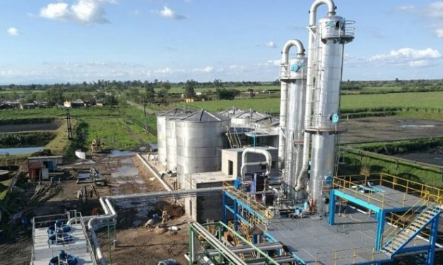 Entró en operaciones la central de cogeneración a partir de bagazo del Ingenio Leales en Tucumán