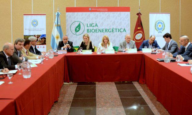 Provincias nucleadas en la Liga Bioenergética pedirán reunión con Macri para evitar que se congelen los precios de los biocombustibles
