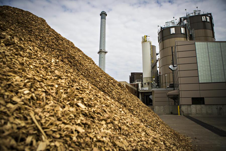 La Provincia de Corrientes impulsa su industria forestal y la biomasa