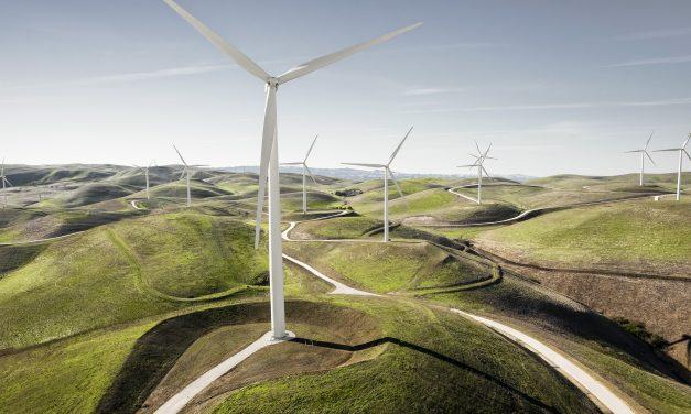Los desafíos de Héctor Pagani, el nuevo presidente de la Asociación Argentina de Energía Eólica