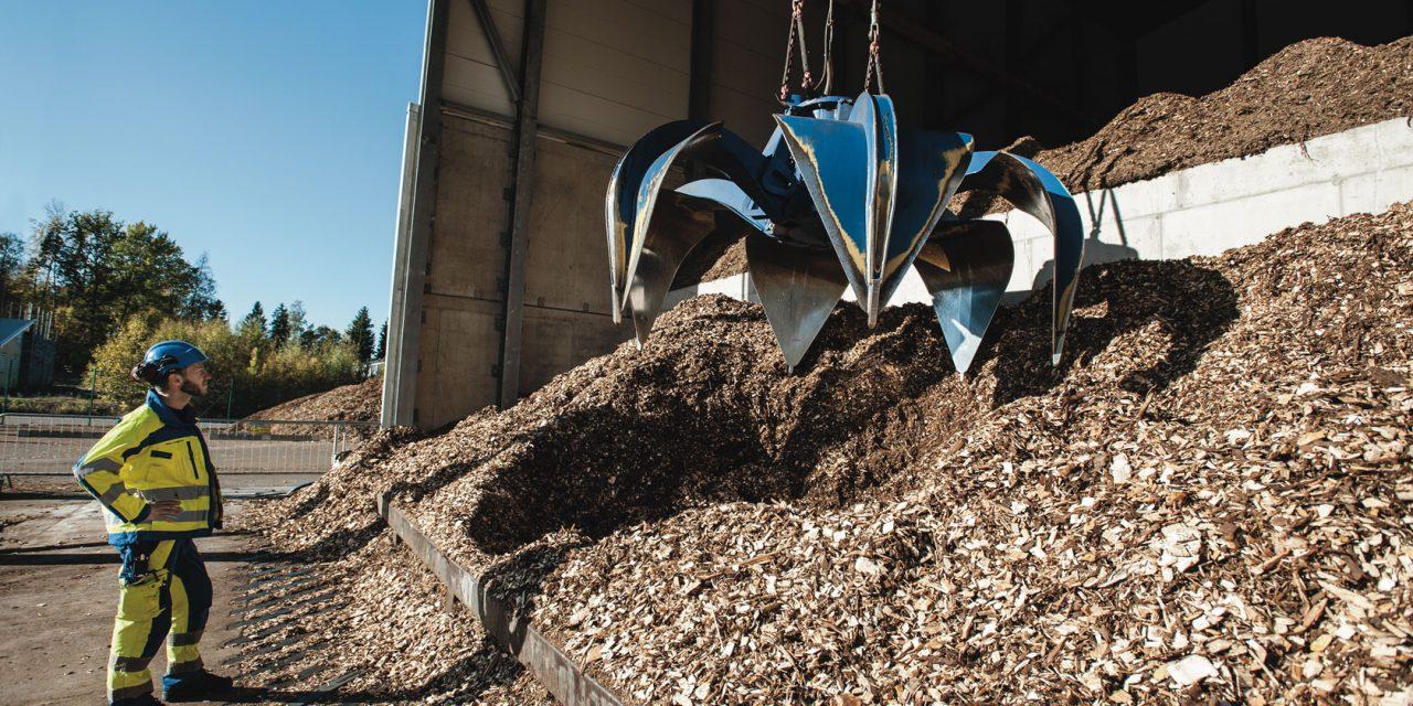 Con recurso propio y solidez financiera: desarrolladores de proyectos de biomasa se muestran optimistas sobre la Ronda 3