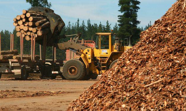 Zozen presenta sus calderas de biomasa para reducir emisiones de gas de efecto invernadero