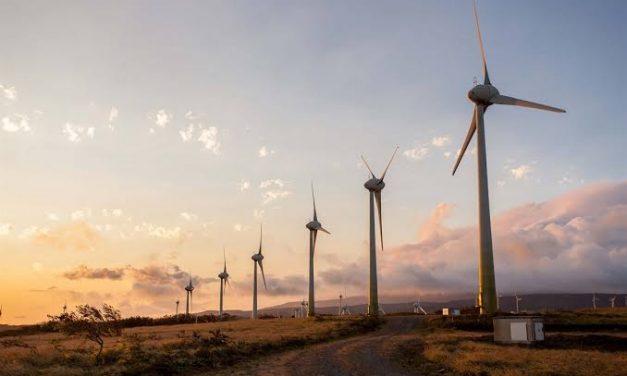 Agencia Nacional de Tierras autoriza construcción de parque eólico de Elecnor en La Guajira
