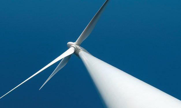 Contratos en pesos y con más industria nacional: asesores de Fernández analizaron el desarrollo de las renovables en Argentina