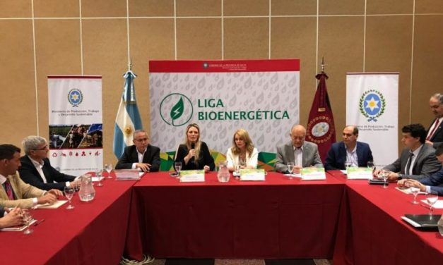 Se prepara una nueva Ley de Biocombustibles en Argentina: contempla duplicar niveles de mezcla y desregular parte del mercado