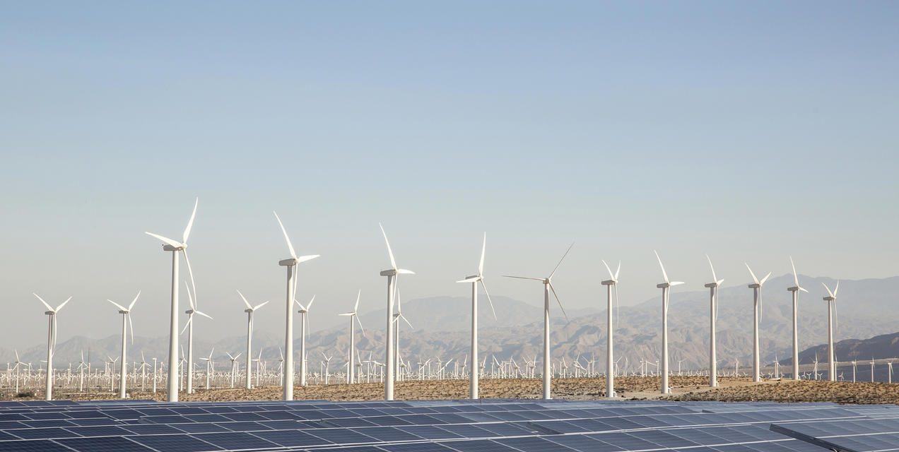 Se abrieron los sobres con 22 empresas para competir en la subasta de eólica y solar que lanzó Ecuador