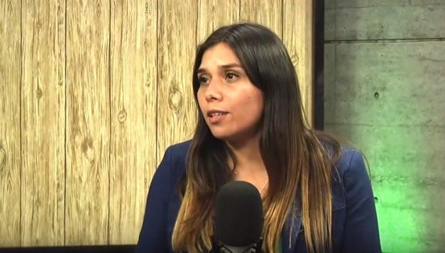 Vannia Toro y una columna de opinión sobre las necesidades regulatorias del sector eléctrico en Chile