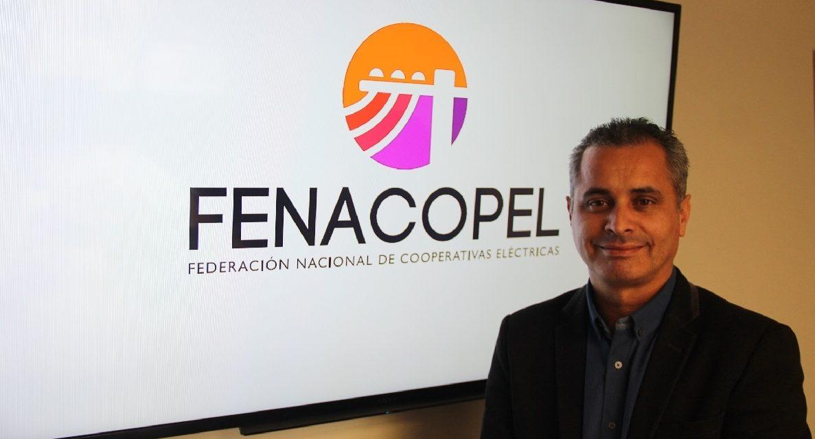 Cómo recibieron las cooperativas las últimas regulaciones del sector eléctrico en Chile