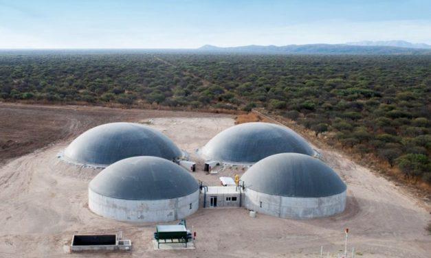 Puebla incluye a las bioenergías en su plan de financiamiento para renovables
