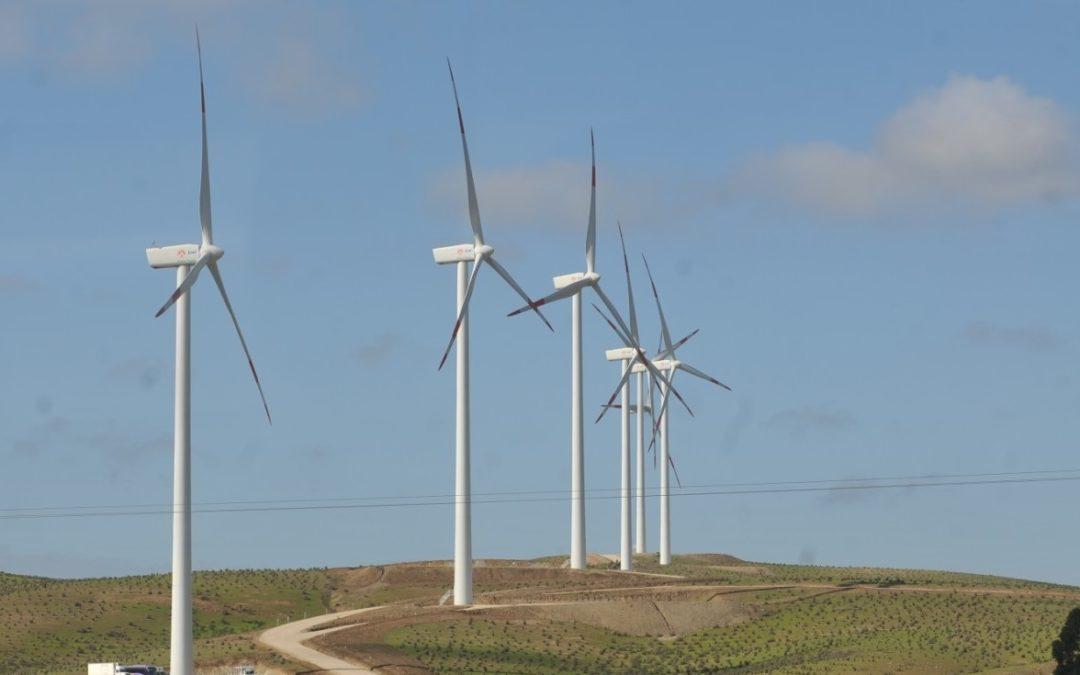 Servicio de evaluación ambiental de Chile publicó nuevos requisitos para presentar proyectos de energía eólica