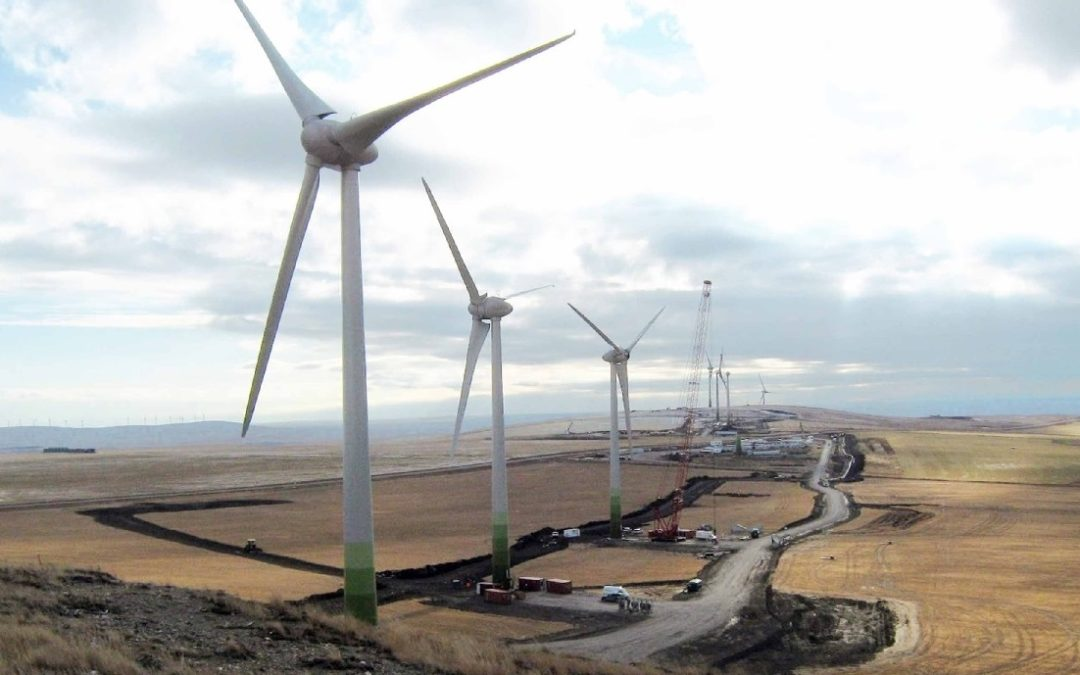 Polizzotto Bacur aseguró que el Gobierno respetará contratos de energías renovables en una nueva reunión con la cámara eólica