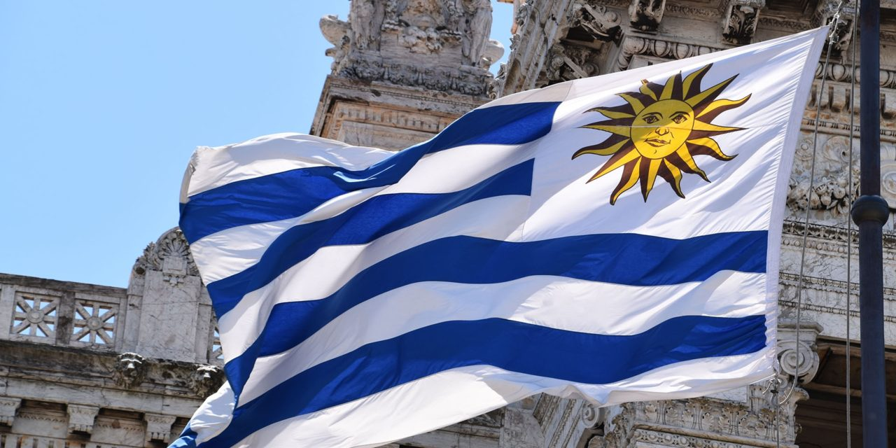 Nuevo informe muestra la evolución y perspectivas de las energías renovables en Uruguay