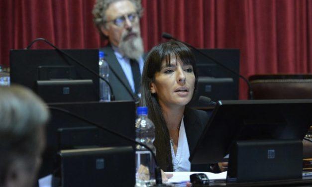 La senadora Verasay volverá a presentar el proyecto de Ley de Energía Solar Térmica en Argentina