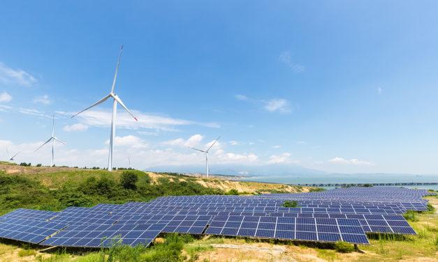 Diez empresas compiten por la construcción de cinco plantas fotovoltaicas y eólicas con baterías en Argentina