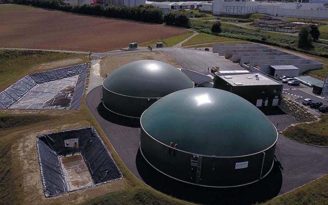 Nuevo León y un potencial de inversión por 350 MW para desarrollar bioenergías