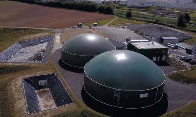 Cinco compañías de peso internacional se unen para ser más competitivas en la construcción de planta de biogás
