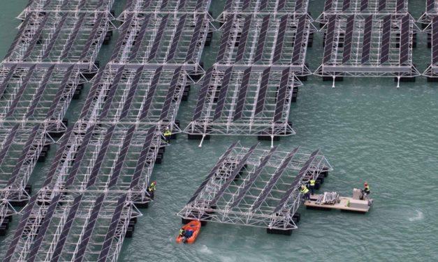 Yingli Solar cierra 2019 con balance positivo a nivel mundial